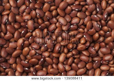 Dried  Flor de mayo beans full frame