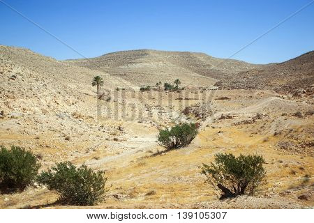 The rocky desert of Matmata in south Tunisia. Matmata is famous for its troglodyte cave dwellings. poster