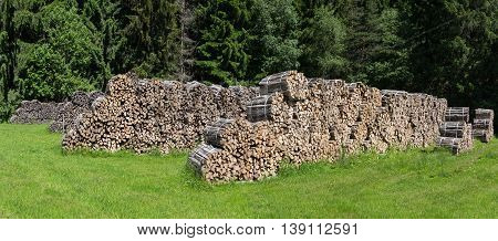 Bundled firewood in several rows on a glade in the forest