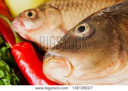 Two fresh raw river fishes, carp and crucian close up on a cutting board with green herbs, red chili on table, home cooking