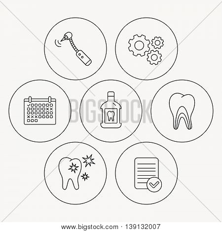 Tooth, mouthwash and dentinal tubules icons. Healthy teeth, dentinal tubules linear sign. Check file, calendar and cogwheel icons. Vector