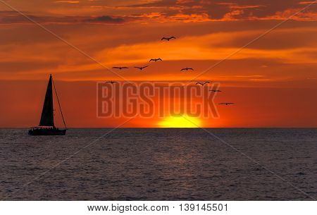 Ocean sunset sailing fantasy is a bright yellow sun setting against a vivid red sky as a sailboat sets on its journey as a flock of seabirds fly overhead.