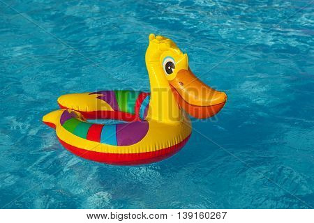 Inflatable pelican swims in the poolInflatable toy