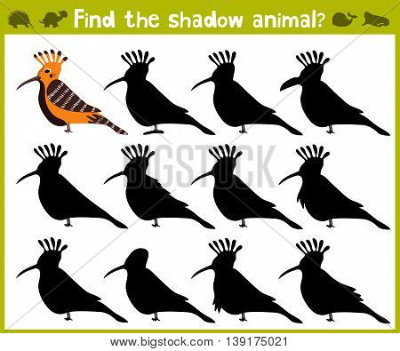 Educational game for children of kindergarten and school age on the development of logic. Birds. Vector illustration