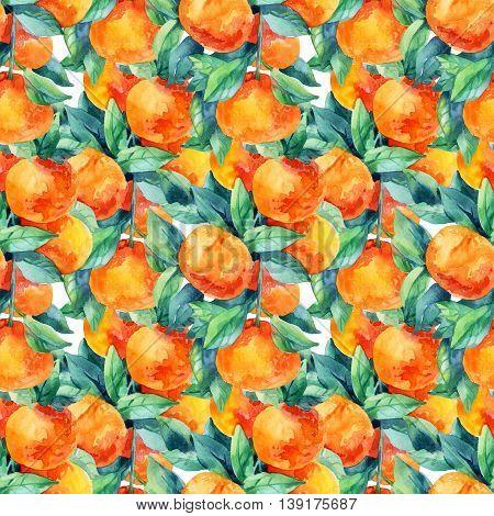 Watercolor mandarine orange fruit with leaves seamless pattern on white background. Orange citrus tree. Mandarin garden. Tangerine and leaves for summer design. Hand painted illustration