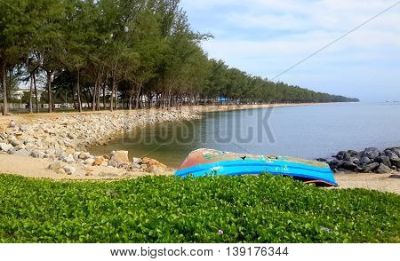 Overturned, damaged rowboat resting on rocky shore and blanket of morning glories, pine trees stretching along the beach into the distance, trees reflecting in the water, Songkhla, Thailand