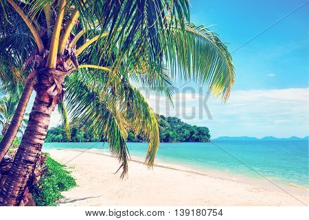 Beautiful beach. View of nice tropical beach with palms around. Holiday and vacation concept