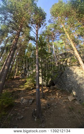Ascent With Cave In The Forest At Faangsjoen In Sweden