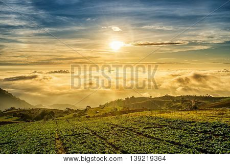 Sunrise Over Mountain At Phu Tab Berk,thailand