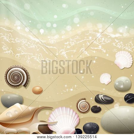 summer sea beach with shells and pebbles