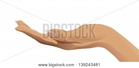 Vector illustration of open human hand - palm