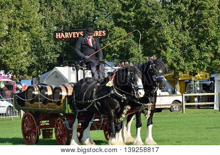 IPSWICH SUFFOLK UK 25 October 2014: East Anglia Equestrian Fair pair of heavy horses and cart in ring