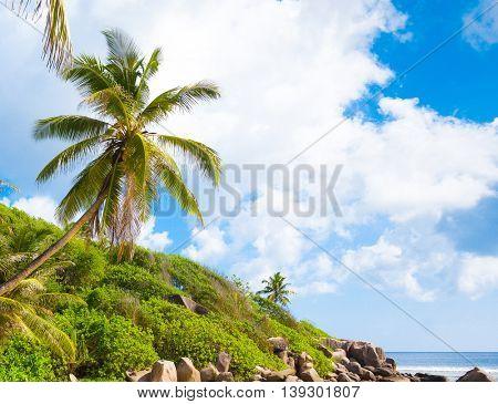Lagoon Seascape Hideaway Scene