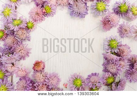 Violet asters wreath on white wooden background, copyspace in the middle of floral placer