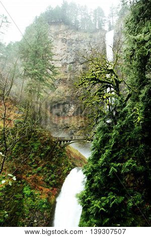 Multnomah Falls in the Columbia River Gorge, Oregon, USA.