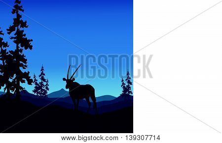 Antelope silhouettes beautiful landscape on blue backgrounds