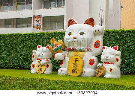 Lucky Chinese Cat On Green Grass.