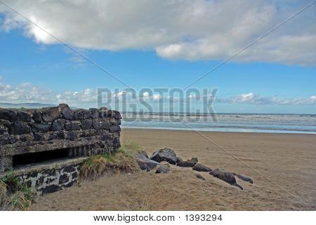 Guarding The Beach