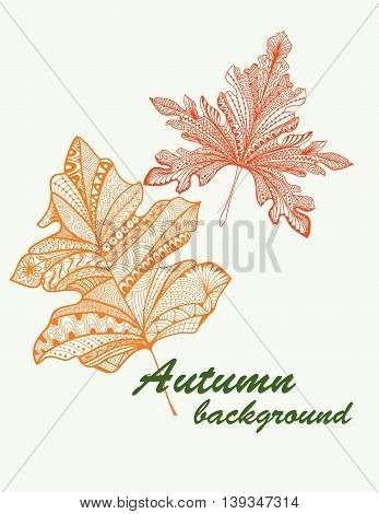 Autumn. Hand drawn lives. Doodles design elements.