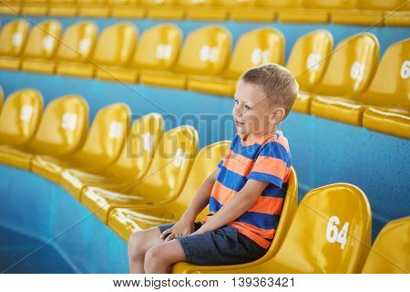 Child Take Own Seat In The Stadium Or Dolphinarium And Waiting Patiently When The Show Or Game Start