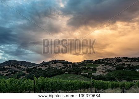 Colorful, saturated clouds during sunset over California hills and vineyard. Glowing orange and blue cloud cover at sunset in Napa Valley. Rows of lush grapevines and rolling hills.