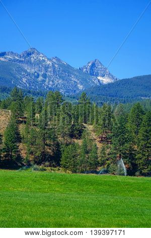 The rugged Bitterroot mountains form a beautiful background for forest and fields in Montana.