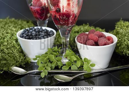 Fruits in white bowls with silver spoons, and ice cream in glass. Ice cream with raspberries, blueberries and raspberries syrup stays on mirror table with moss and berries bushes as decoration.