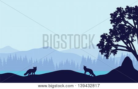 Landscape fox in fields silhouettes vector illustration