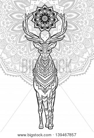 Ornament deer vector. Beautiful illustration deer  for design, print clothing, stickers, tattoos, Adult Coloring book. Hand drawn animal illustration. Bohemian deer lace