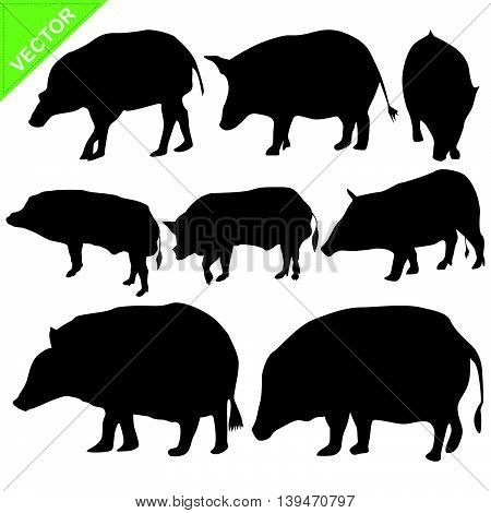 Boar silhouettes vector collections on white color background