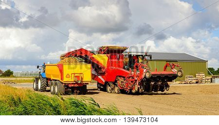 Red colored self-propelled potato harvester loads grubbed potatoes in a yellow tipping trailer coupled with a blue tractor in a Dutch potato field in the summer season.