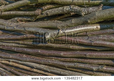 Closeup of stacked wood limb outdoor at a sunny day