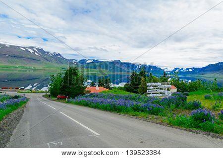 Thingeyri, The West Fjords