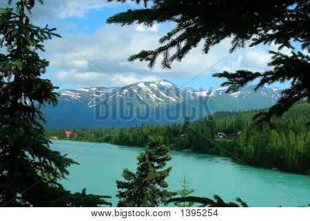 Alaska Mountains And Trees