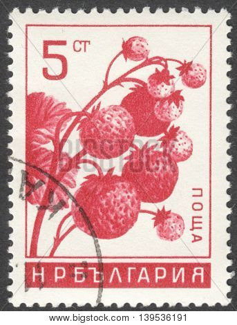 MOSCOW RUSSIA - CIRCA JANUARY 2016: a post stamp printed in BULGARIA shows berries Fragaria ananassa the series