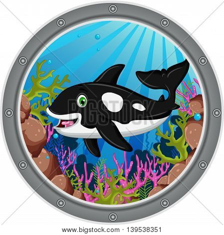 cute killer whale cartoon on the frame