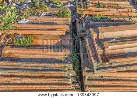 Old stacked roofing tiles with moss over rampantly grows