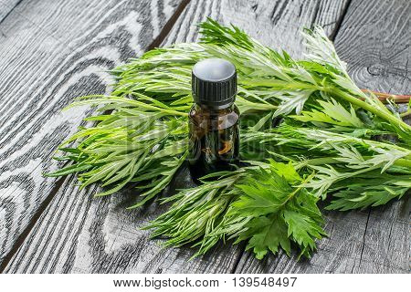 Essential oil of wormwood (Artemisia absinthium) in a small brown bottle fresh sagebrush branches on a dark wooden table