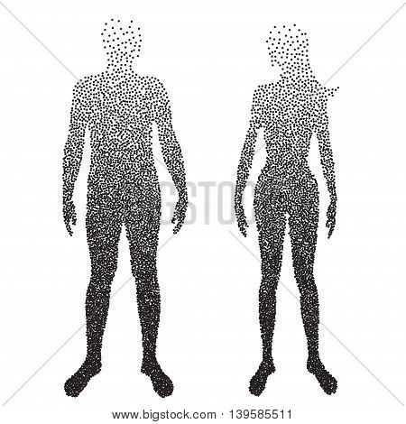 Half body , Male and female Anatomy, designed using square dot, graphic vector. EPS