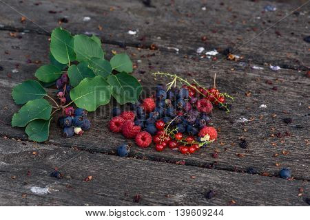 Ripe shadberry, redcurrant and raspberry with branch and leaves scattered on the weathered wooden table in garden