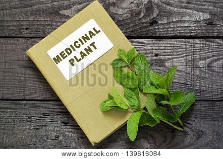 Medicinal plant mint (Mentha spicata) and herbalist handbook on a dark wooden table. Used in aromatherapy phytotherapy SPA healthy and vegetarian food