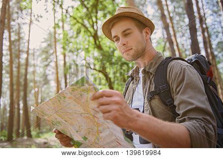 Cheerful male tourist is making journey in forest. He is standing and looking at map with seriousness