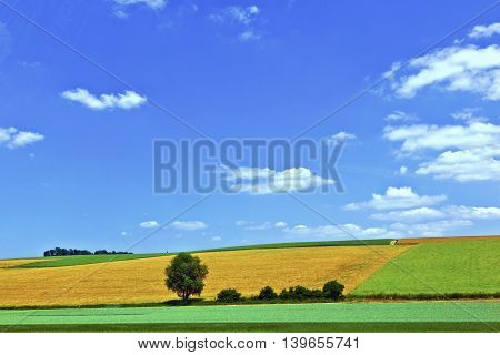 rural landscape with fields under blue sky