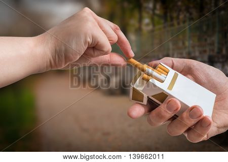 Hand Is Taking Cigarette From Cigarette Pack An Accepting An Off