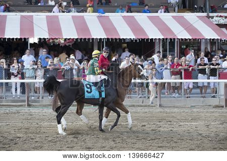 SARATOGA SPRINGS, NY - July 22: Harlands Thunder in the Post Parade for the 98th runniing of the Schulerville Stakes for 2 year old Fillys on July 22, 2016 in Saratoga Springs, NY.