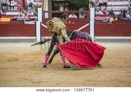 Jaen SPAIN - October 17 2008: The Spanish Bullfighter Cesar Jimenez bullfighting with the crutch in the Bullring of Jaen Spain