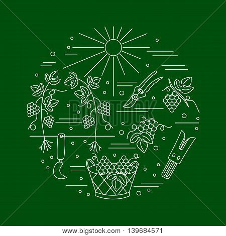 Winery icons arranged in circle composition isolated on green background. Winemaking wine tasting template for banner flyer t shirt book cover. Winery symbols in line style. Vector illustration.