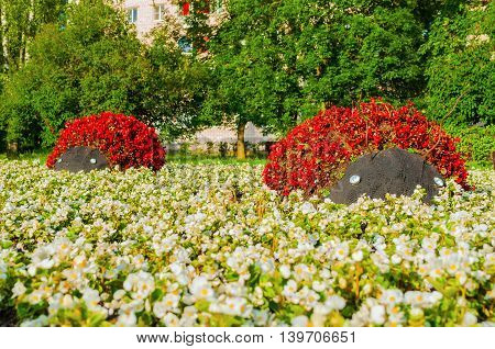 Summer park floral landscaping - flowerbeds with landscaping features in form of ladybirds covered with red begonia flowers. Funny landscaping with flowers in the summer park.