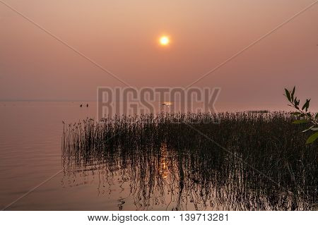 pink decline - a condition of the atmosphere saturated with water vapors in beams of the evening sun. A view of the lake, the horizon, the sky, the sun, thickets of a cane, the bathing people and fishing boats.