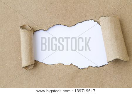 Blank burnt torn paper. Write your message.